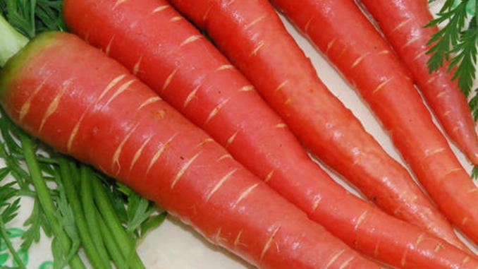 गाजर का उपयोग