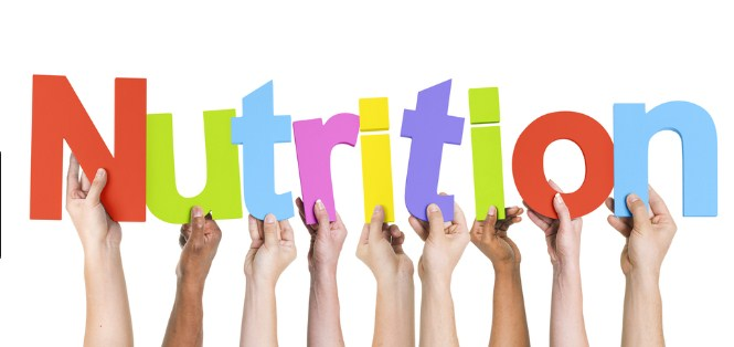 Nutrition Definition And Nutrition Types