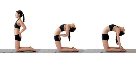उष्ट्रासन(Camel pose) ,yoga pose