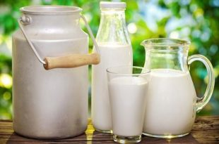 Health Benefits of Milk and Uses of Milk