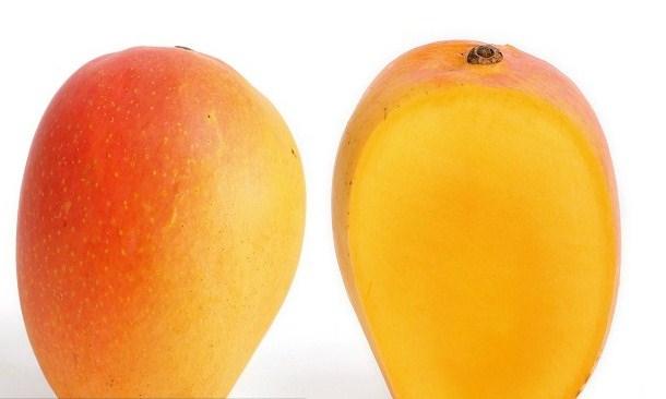 Types of Mango: Many Kinds of Mangoes
