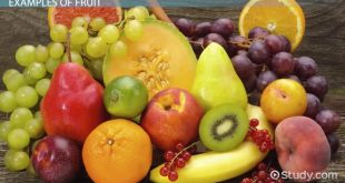 सर्वश्रेष्ठ 10 फल (Best Fruits for Daily Health & Daily Diet in Hindi)