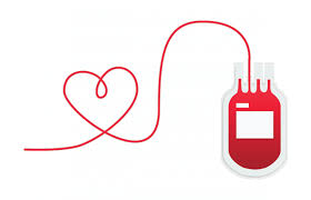 how often can you donate blood | our health tips
