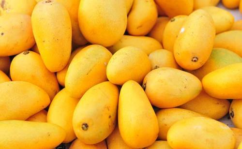 indian-mangoes oranges Grapes Best Fruits for Daily Health & Daily Diet in Hindi Kiwi cherries