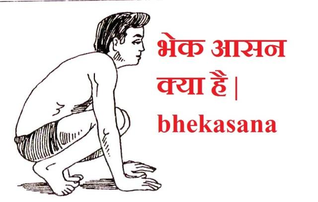 भेक आसन | bhekasana