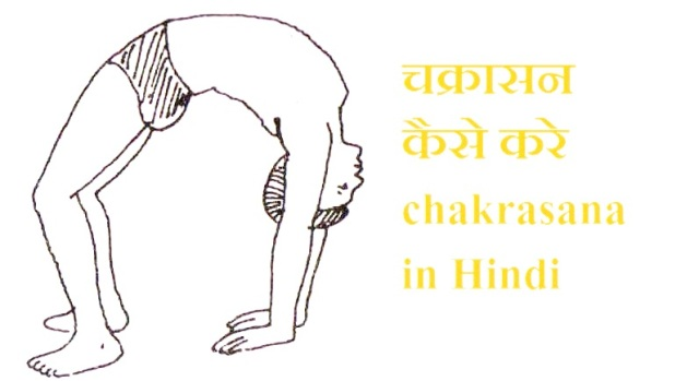 chakrasana Steps in hindi