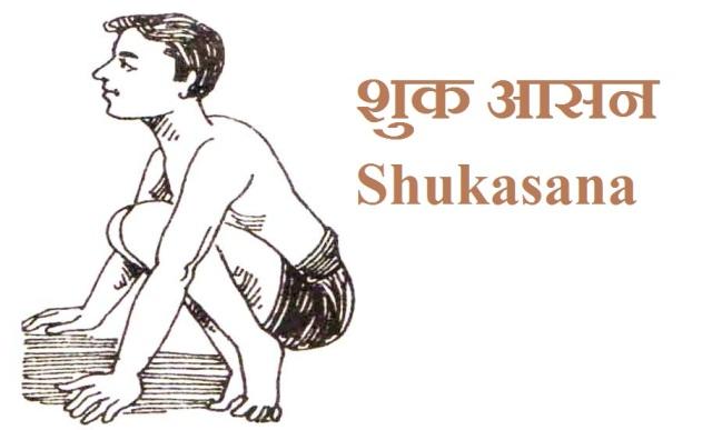 शुक आसन Shukasana