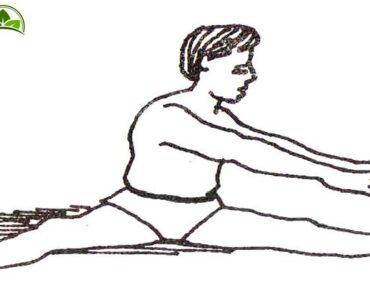 kamar chakrasana yoga pose