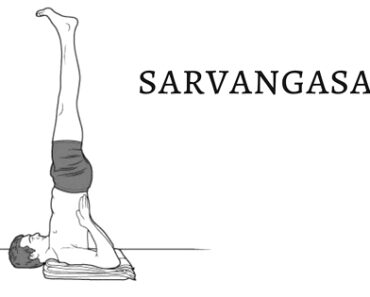sarvangasana in hindi