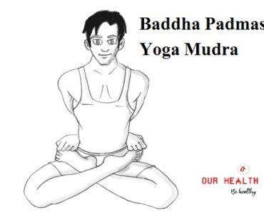 बद्ध पद्मासन योगमुद्रा | Baddha Padmasana Yoga Mudra