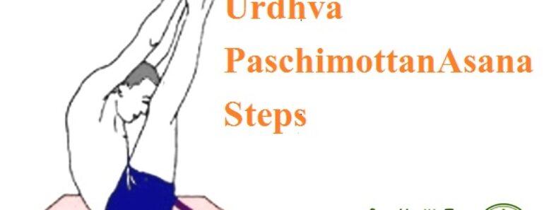 Urdhva Paschimottanasana