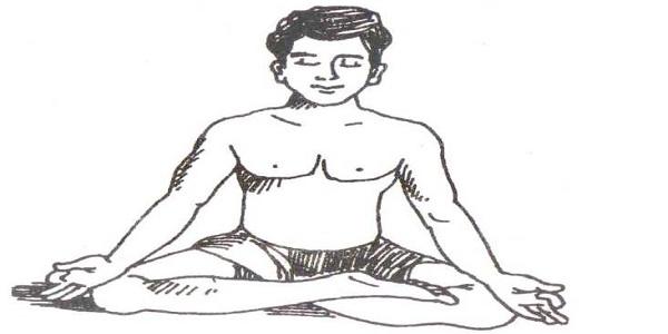 Guptasana(Hidden Pose) Steps