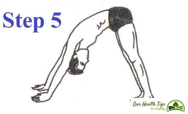 Surya Namaskar Step 5 in hindi