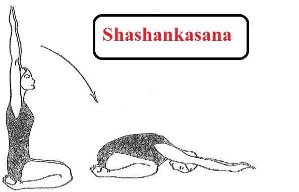 shashankasana Steps