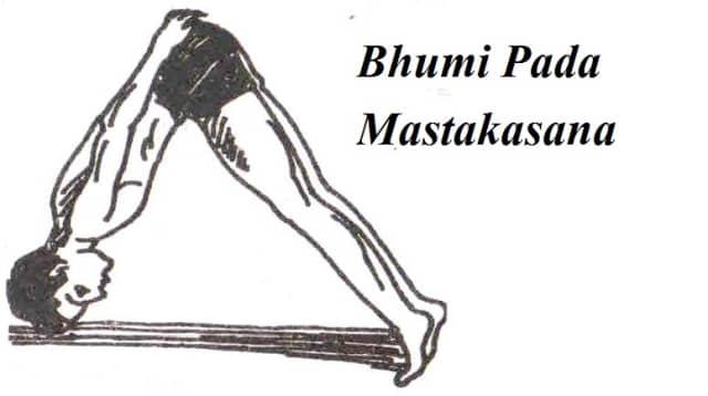 Bhumi Pada Mastakasana step