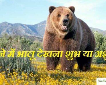 Sapne me Bhalu ko Dekhna